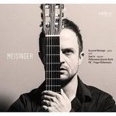 Meisinger by Krzysztof Meisinger