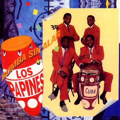 Rumba Sin Alarde by Los Papines