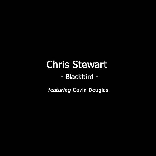 Blackbird by Chris Stewart
