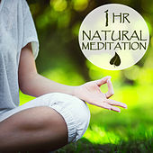 1 Hour Natural Meditation: Peaceful Relaxing Music for Meditation & Yoga by Various Artists