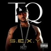 S.E.X.Y. by TQ