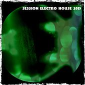 Session Electro House 2015 by Various Artists