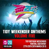 Tidy Weekender Anthems, Vol. 5 - EP by Various Artists