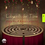 Labyrinth der Töne, Vol. 10 - Deep & Tech-House Music by Various Artists
