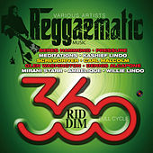 Reggaematic Music-360 Riddim by Various Artists