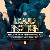 Liquid Motion II - EP by Various Artists