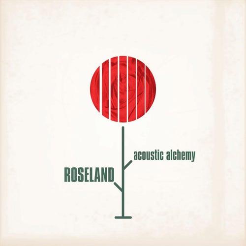 Roseland von Acoustic Alchemy