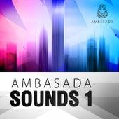 Ambasada Sounds, Vol. 1 by Various Artists