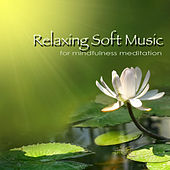 Relaxing Soft Music for Mindfulness Meditation - Deep Relaxation & Sleep by Various Artists