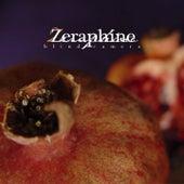 Blind Camera by Zeraphine
