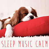 Sleep Music Calm by Various Artists