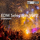 EDM Selection, Vol. 2 - EP by Various Artists