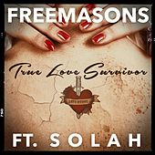 True Love Survivor (Remixes) by The Freemasons