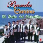 El Baile Del Caballito by Banda Camino