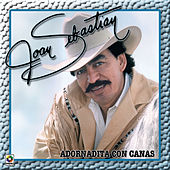 Adornadita Con Canas by Joan Sebastian