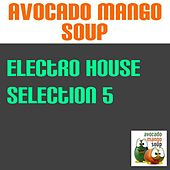 Electro House Selection, Vol. 5 by Various Artists