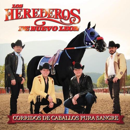 Corridos de Caballos Pura Sangre by Los Herederos De Nuevo Leon