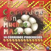 Corridos Con Muchos Mas... 14 Corridos Poderosos by Various Artists