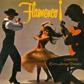 Flamenco! by Candido