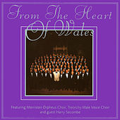 From The Heart Of Wales by Various Artists