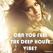 Can You Feel the Deep House Vibe? by Various Artists