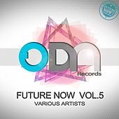 Future Now Vol.5 by Various Artists