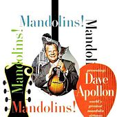 Mandolins, Mandolins by Dave Apollon