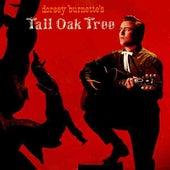 Tall Oak Tree by Dorsey Burnette