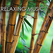 Relaxing Music - Songs and Lullabies to Help You Relax, Sleep and Meditate (With Piano Music and Celtic Harp) by Relaxing Music Orchestra