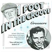 One Foot In The Groove - The Crooners by Various Artists