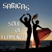 Soul Of Flamenco by Sabicas