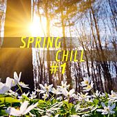 Spring Chill #1 by Various Artists