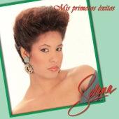 Mis Primeros Éxitos by Various Artists