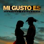 Mi Gusto Es: Nortenos Romanticos Con Alfredito Olivas, Carlos y Jose, Banda el Recodo, Chalino Sanchez y Mas von Various Artists
