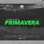Colección Primavera Vol. 1 by Various Artists
