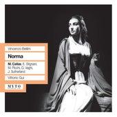 Bellini: Norma by Mirto Picchi