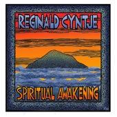 Spiritual Awakening by Reginald Cyntje