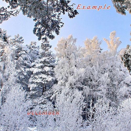 December by Example