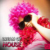 Dream of House by Various Artists