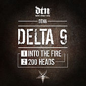 Into the Fire - 200 Heads by Delta 9