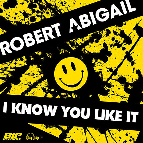 I Know You Like It Radio Edit by Robert Abigail