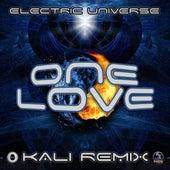 One Love (Kali Remix) by Electric Universe