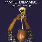 Kamer Feeling by Manu Dibango