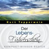 Der Lebens-Führerschein - Kompakt-Wissen Basics by Kurt Tepperwein
