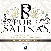 Pure Salinas, Vol. 2 (Compiled By Bruno from Ibiza) by Various Artists