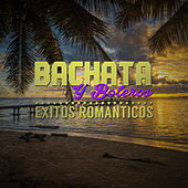 Bachata y Boleros: Exitos Romanticos by Various Artists