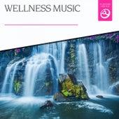 Wellness Music by Various Artists