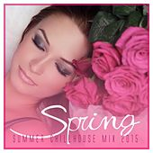 Spring - Summer Chillhouse Mix 2015 by Various Artists