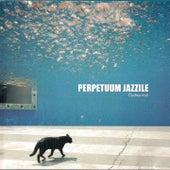 Čudna Noč by Perpetuum Jazzile