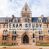 Exam Study Music For Quiet Moments by Various Artists